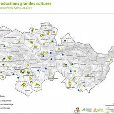 Production grandes cultures